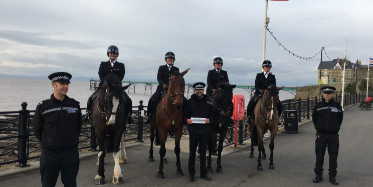 Police Horse Clevedon